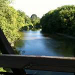 Humber River from Bike Trail